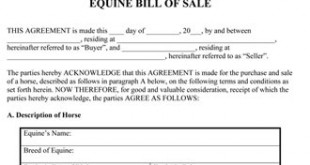 Marvelous Equine Bill Of Sale Form Inside Free Horse Bill Of Sale