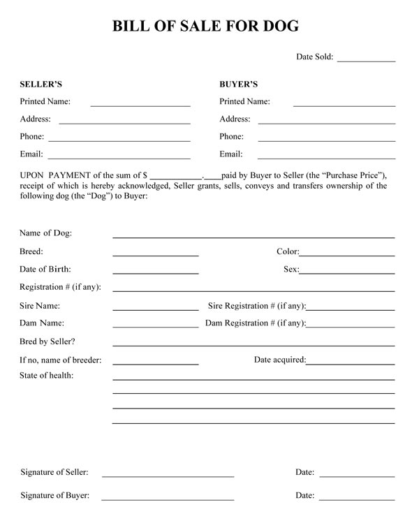 Bill Of Sale Form  Free Sales Agreement Template